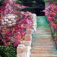 Stairs-Dennis-Bacchus.jpg